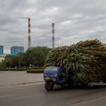 """纽约时报:工作、房子和牛:中国代价高昂的""""运动式脱贫"""""""