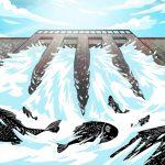 【南华早报】中国大力兴建大坝:依赖水电走向碳中和之路?