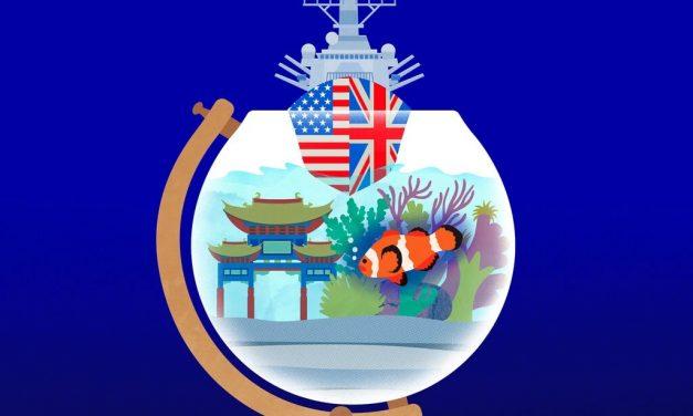 张智斌:异议是爱国的最高形式——关于精英、爱国与坚持真理的探讨